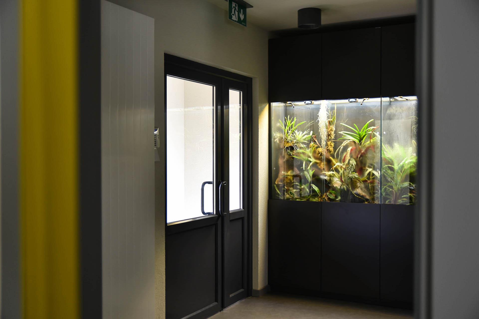 orchidariumas administracinio pastato laiptinės interjere Mažeikiuose
